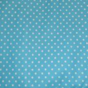 arbor-cat-blue-2-700×541